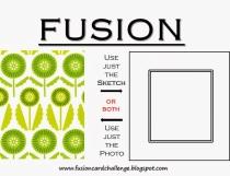 fusion6tag